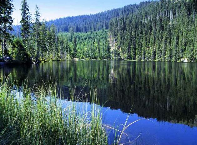 Kemp Železná Ruda - Černé jezero