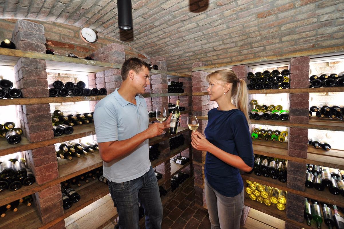 Vinný sklep Pardubický kraj