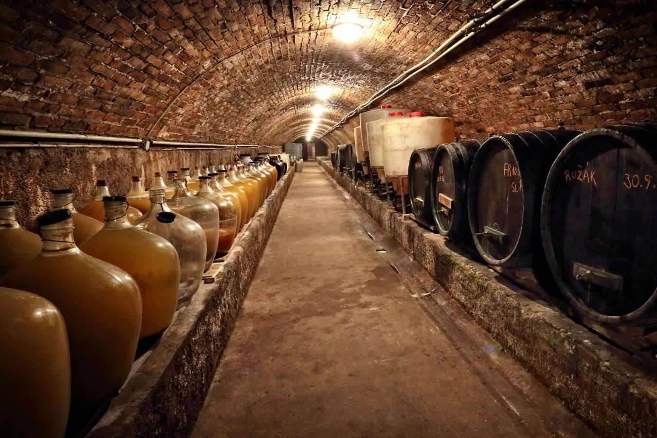 Vinný sklep s lisovnou Šatov