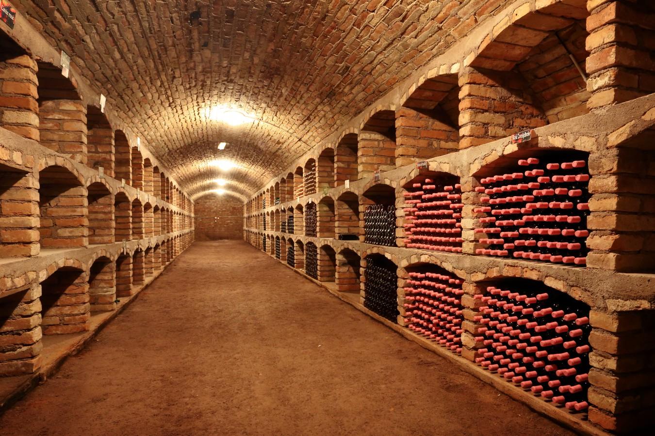 Degustace vín penzion Šatov, jižní Morava