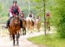 Ferme Selský dvůr - équitation