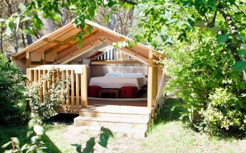Kemp Rocchette - safari stany