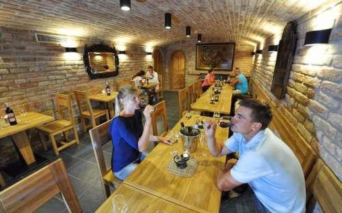 Vinný sklep na Dolní Moravě - 25 míst