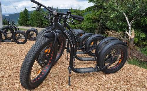 ファットバイクのレンタル