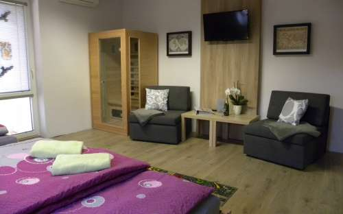 Chestnut apartment with infrasauna for 2-4 (max. 5) people