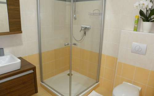 Chestnut apartment with infrared sauna 2-4 (max. 5) persons - shower with toilet