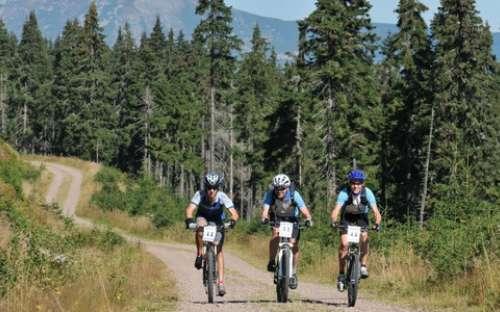 ジャイアント山脈でのサイクリング