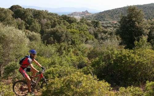 Camping California - pro cyklisty