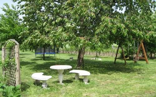 Trampoline en een speeltuin in de tuin