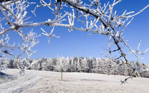 Chalupa Majdalenka - zima