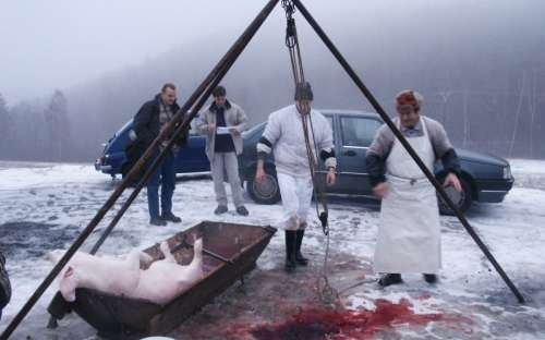 Macello tradizionale: festa del maiale