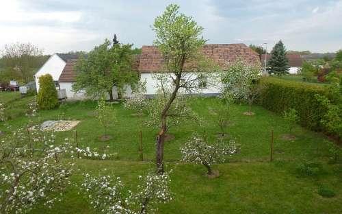 Pohled na zahradu z 3 lůžkového pokoje v podkroví