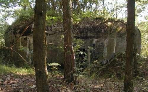 Vojenský bunkr nad Dolnim rybníkem Modletice