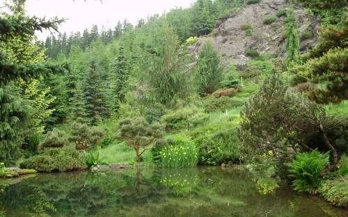 Skalka Sedloňov - 1 km