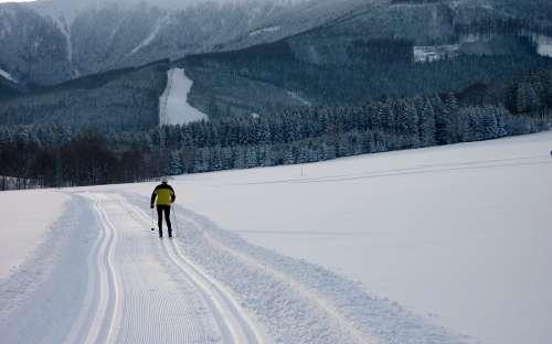 Běžkování a lyžování v Jeseníkách