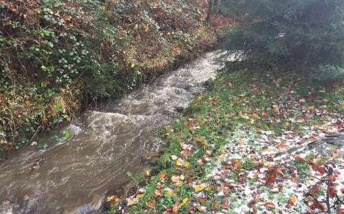 Potok pod grilovací chatkou