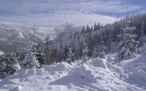 Zima pod Lysą - to kupa śniegu i raju biegowego