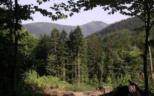 I vårt land under Lysa Mountain