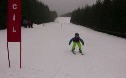 Children's ski races for 2018 forest animals prices