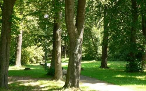 Park za potokem vedle chaty