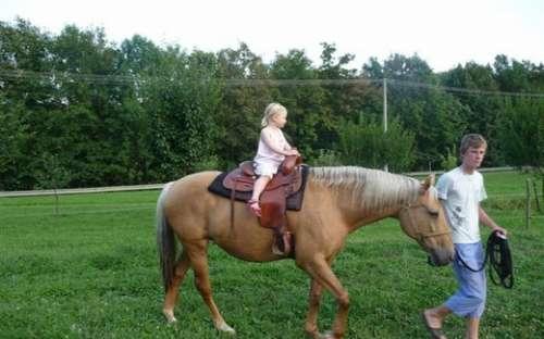 Vození na koni