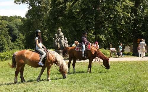 Hestevæddeløb Ratibořice