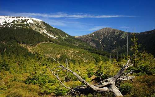 Omgivelser af Giant Mountains