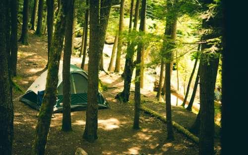 Camp Marina Píšťany - Zelten