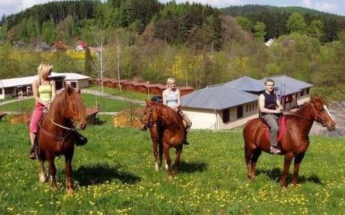 Kemp a koupalište Pecka - koně, aktivity