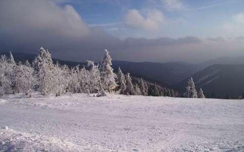 アパートメンツシュニーベルク-オーレ山脈