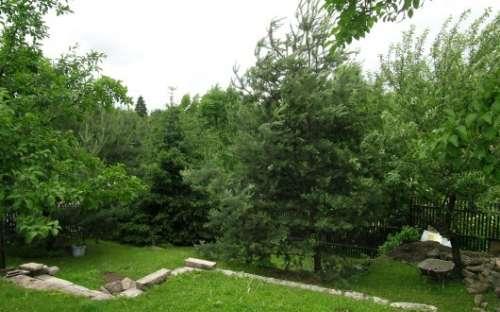 Zahrada v penzionu