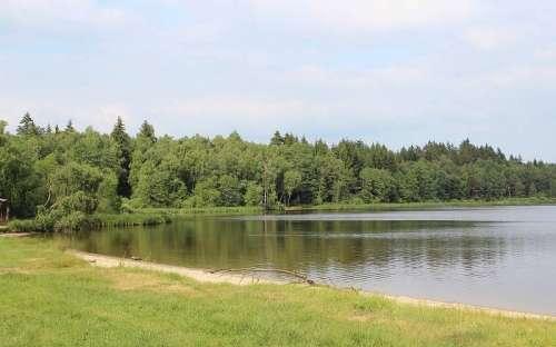 Rybník Osika - přírodní koupaliště