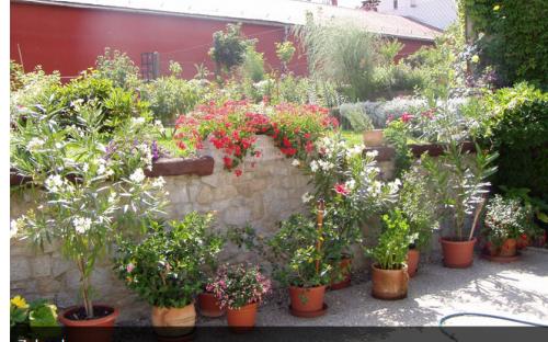 Penzion Iga - zahrada