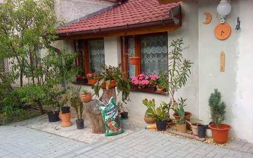 Penzion na Samotě, ubytování Jižní Čechy, na Lipně, penzion Jihočeský kraj