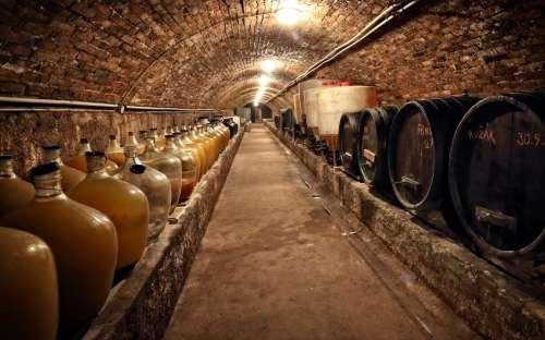 Vinný sklep s lisovnou Šatov Znojmo