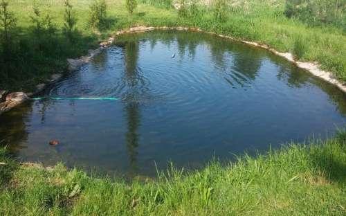 釣りに使われる池