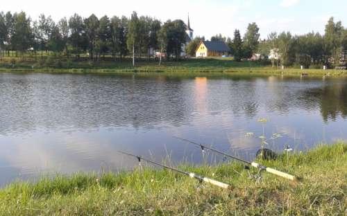 Rybaření na řece Divoká Orlice