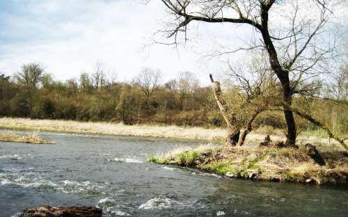 reka berounka 2 km od penzionu