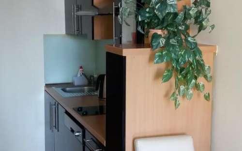 Luxusní apartmán McVitek - Šumava