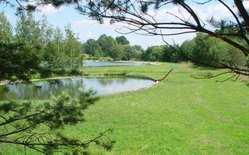 Kemp Žichovec - rybník