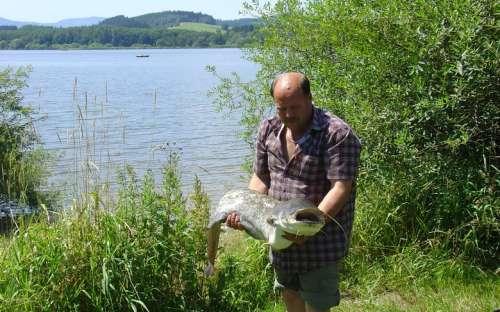 Kemp Olšina Lipno - rybaření