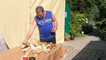 raccolta di funghi intorno a Kaplice - Penzion Samota
