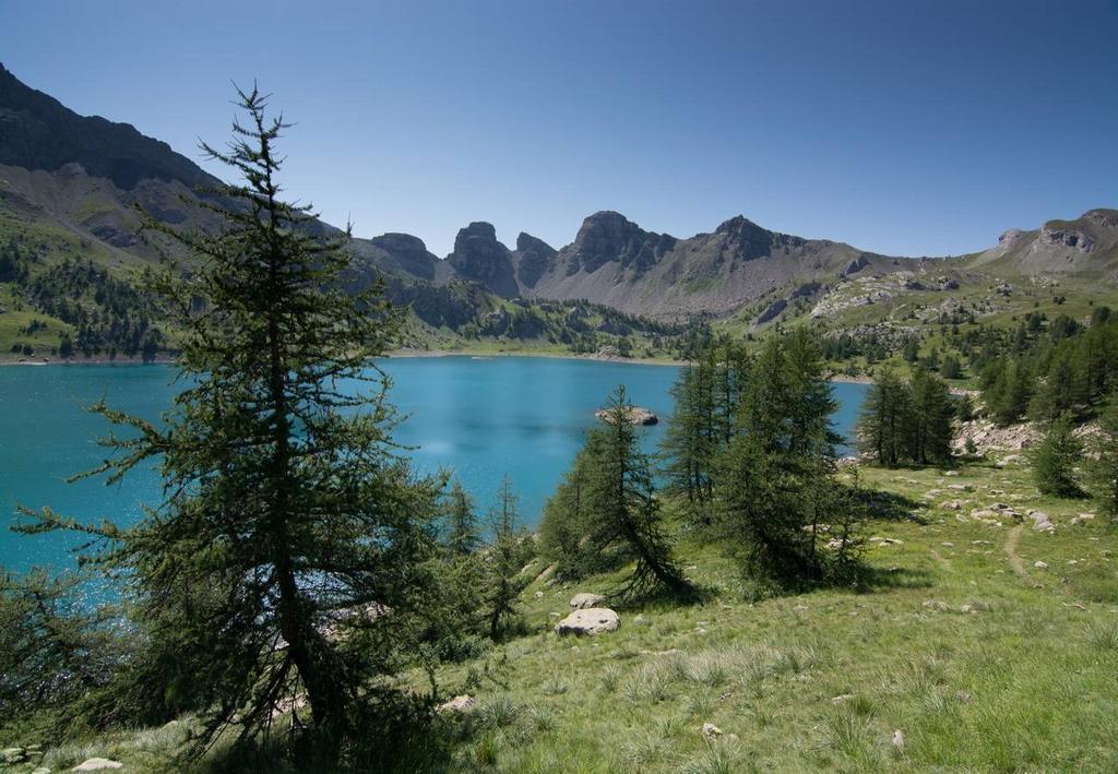 https://www.kempy-chaty.cz/sites/default/files/turistika/camping_la_ferme_de_castellane_x2.jpg