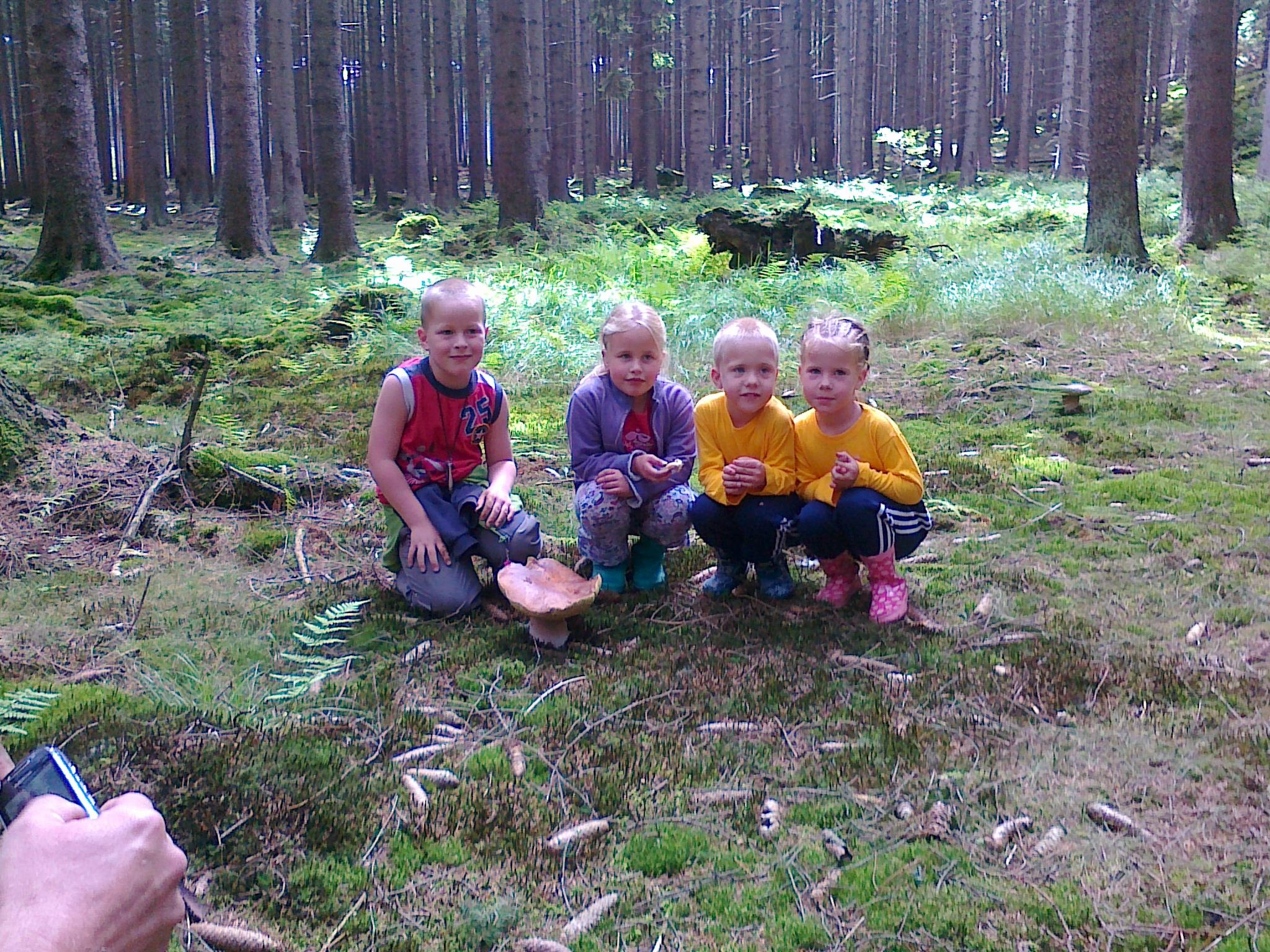 Zbieranie grzybów wokół obozu