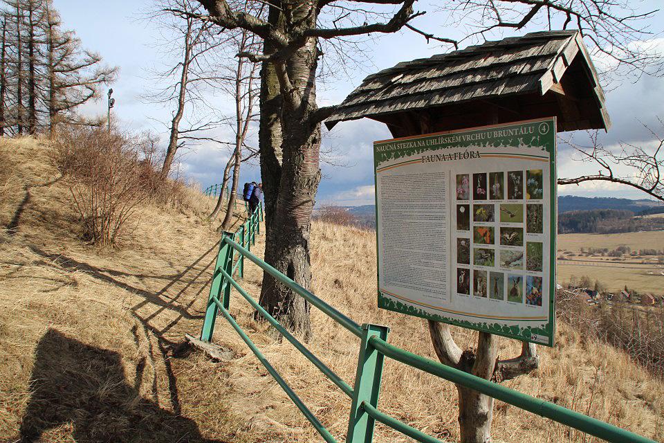 Informační tabule - Uhlířský vrch