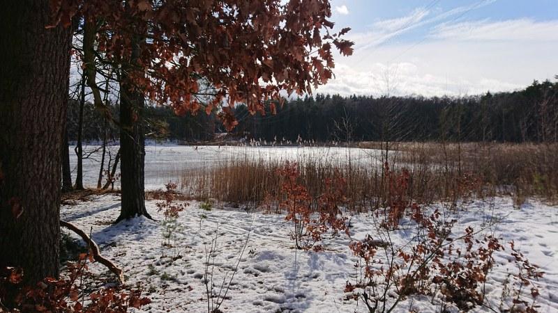 https://www.kempy-chaty.cz/sites/default/files/turistika/kamenny_rybnik_-_scenerie_800x450.jpg