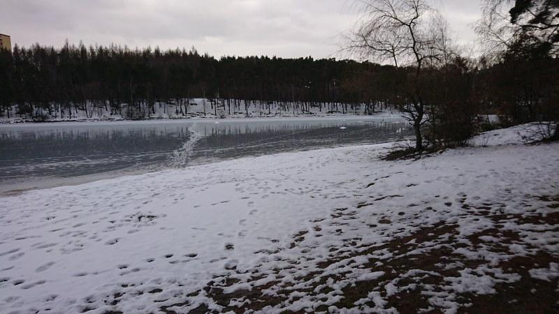 https://www.kempy-chaty.cz/sites/default/files/turistika/sidlovsky_rybnik_800x450.jpg