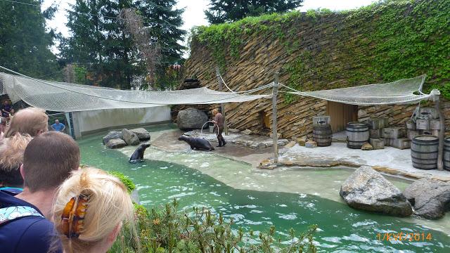 https://www.kempy-chaty.cz/sites/default/files/turistika/zoo_lesna_zlin_2.jpg